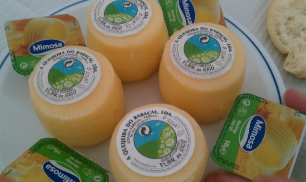 queijos coimbra
