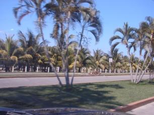Tela - Costa Atlantica - Honduras - 2009 (4)