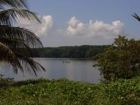Tela - Costa Atlantica - Honduras - 2009 (62)