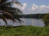 Tela - Costa Atlantica - Honduras - 2009 (64)