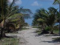 Tela - Costa Atlantica - Honduras - 2009 (86)